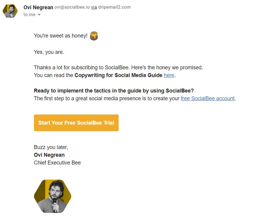 SocialBee.io Newsletter