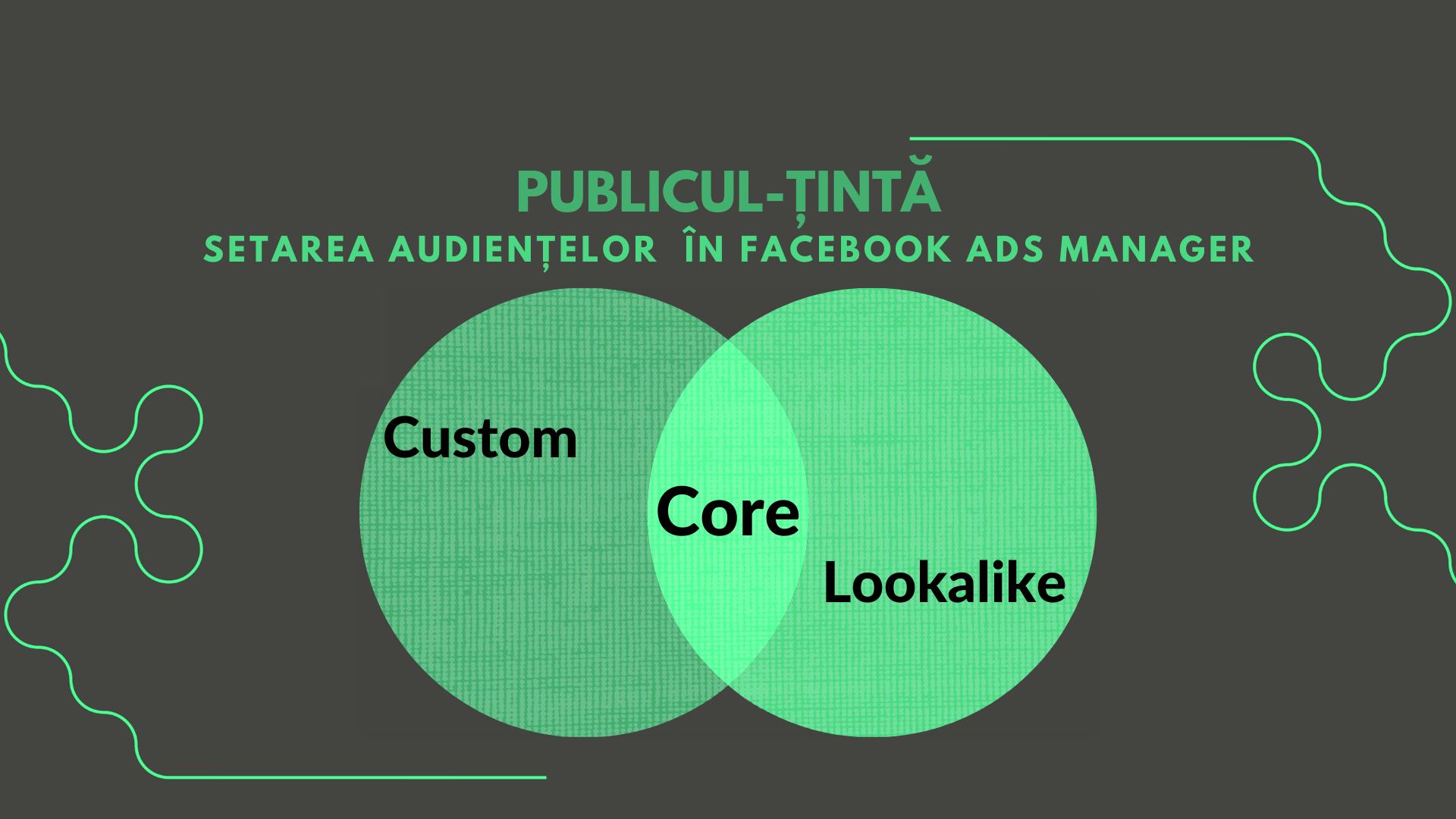 Publicul-țintă: Setarea audiențelor în Facebook Ads Manager